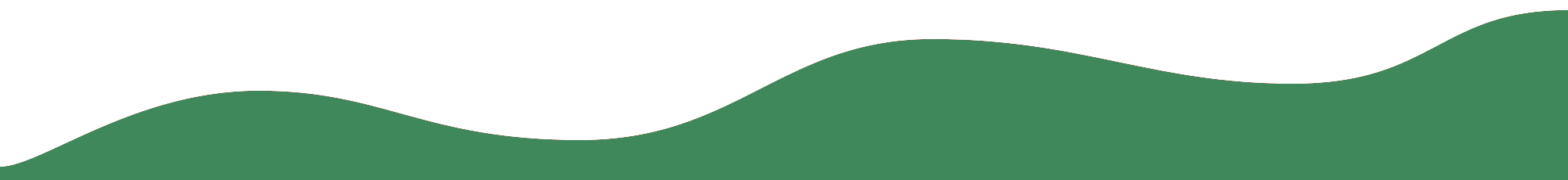 Green wave footer border